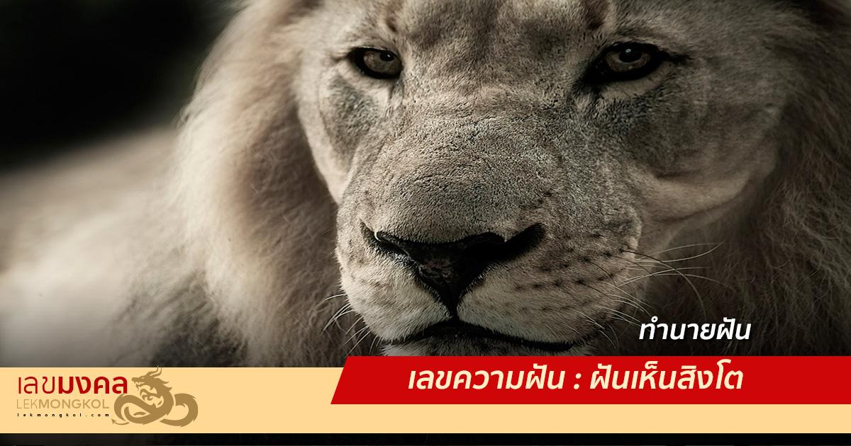 เลขความฝัน : ฝันเห็นสิงโต